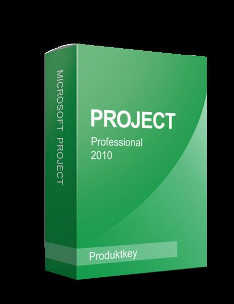 Microsoft Project 2010 Professional